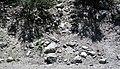 Alpine glacial till (Pleistocene; Lee Vining Canyon, Yosemite National Park, California, USA) 5.jpg