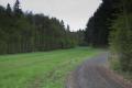 Alsfeld Altenburg SCI 555520578 Wald zwischen Romrod und Ober-Sorg NE.png
