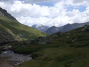 Gran Paradiso National Park - Plateau de Nivolet.