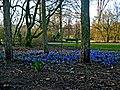 Amsterdam, 21 de março de 2009 - panoramio - Kell Kell (1).jpg