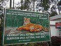 Anaimudi and Pampadam Shola National Park of Nilgiri Hills, Kerala.jpg
