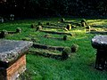 Ancient graves at the south end of Bolney Churchyard - geograph.org.uk - 1596196.jpg