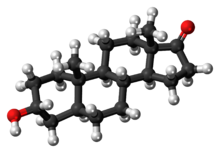 Ball-and-stick model of the androsterone molecule