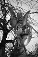 Angels (11609855854).jpg