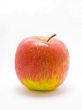 Apple in lightbox.jpg