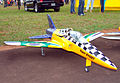 Apresentação aeromodelo Jato 240509 REFON 5.JPG