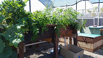 Huntington Beach High School - Image: Aquaponics System (HBHS) July 2015