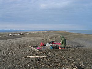 Arey Island - Camping on Arey Island