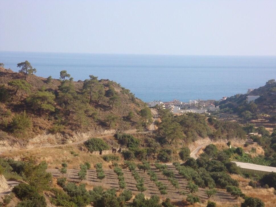 Arvi view