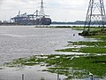 At the head of Southampton Water - geograph.org.uk - 838363.jpg