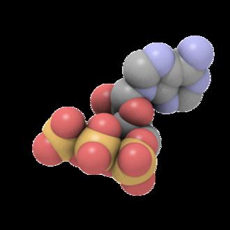 Adenosine triphosphate - Image: Atp exp.qutemol ball