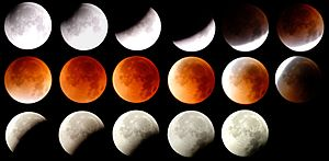August 2007 lunar eclipse - Image: August 2007 Lunar Eclipse Scholten