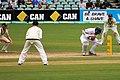 Australia v England (2nd Test, Adelaide Oval, 2013-14) (11287518515).jpg