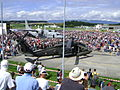 Austrian Black hawk.JPG