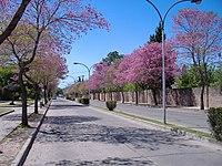 Avenida del Combate, San Lorenzo.jpg