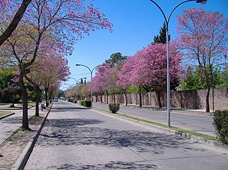 San Lorenzo, Santa Fe - Image: Avenida del Combate, San Lorenzo