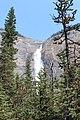 Awesome Takakkaw Falls IMG 4711.JPG