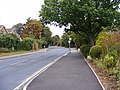B1009 Baddow Road - geograph.org.uk - 1499562.jpg