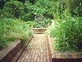 BGM Herb Garden.jpg