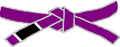 BJJ Purple Belt.PNG