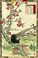Bairei kachō gafu, Spring 04, peach-blossoms and green pheasants.jpg