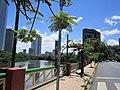 Bairro da Jaqueira e o Rio Capibaribe - Zona Norte - Recife, Pernambuco, Brasil (8646566164).jpg