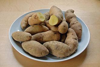 Bamberg potato - 'Bamberg' potatoes