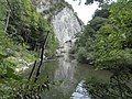 Banat, Nera Canyon - panoramio (38).jpg