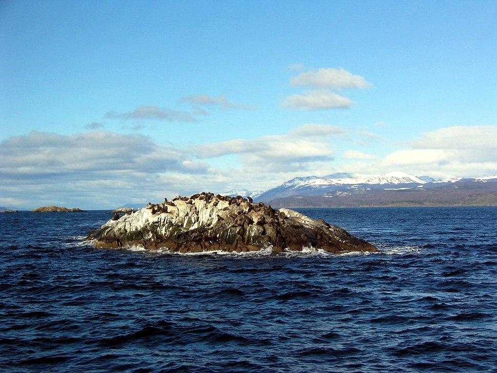 Beagle Channel - La Isla de Los Lobos