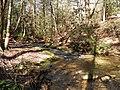 Bearden Creek - panoramio (1).jpg