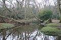 Beaulieu River - geograph.org.uk - 1123531.jpg
