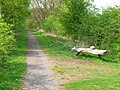 Bench in Wynyard Woodland Park - geograph.org.uk - 167315.jpg