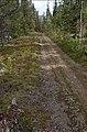 Bergmyrberget - KMB - 16000300040475.jpg