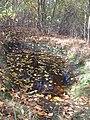 Beton in het bos (31304886756).jpg