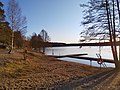 Bild med bl.a. livbojar tagen i naturreservatet Flaten.jpg