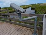 Black Point Wildlife Drive, Merritt Island FL - Flickr - Rusty Clark (205).jpg