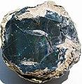 Black precious opal (Tertiary; Wollo Province, Ethiopia) 1 (48163602967).jpg