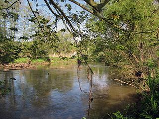 Blies river