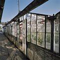 Bloemenkas - Aalsmeer - 20404724 - RCE.jpg