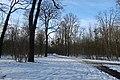 Bois de Boulogne neige 10.jpg