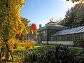 Botanička bašta Jevremovac, Beograd - jesenje boje, svetlo i senke 38.jpg