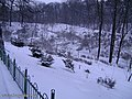 Botanic Garden in winter - panoramio - eugeneloza.jpg