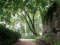 Botanical garden (Zugdidi12).jpg