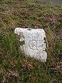 Boundary stone, Knox Knowe - geograph.org.uk - 1459374.jpg