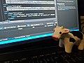 Bovine Development Partner.jpg