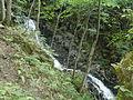 Boyana river 03.JPG