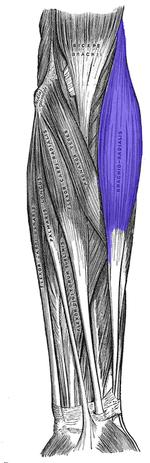 durere severă în articulațiile piciorului ce trebuie făcut artrita articulației umărului și cotului