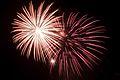 Bray Fireworks (6994412339).jpg