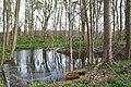 Brick-Kiln Covert, Kedleston. - geograph.org.uk - 1801626.jpg