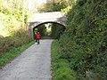 Bridge, Camel Trail. - panoramio.jpg